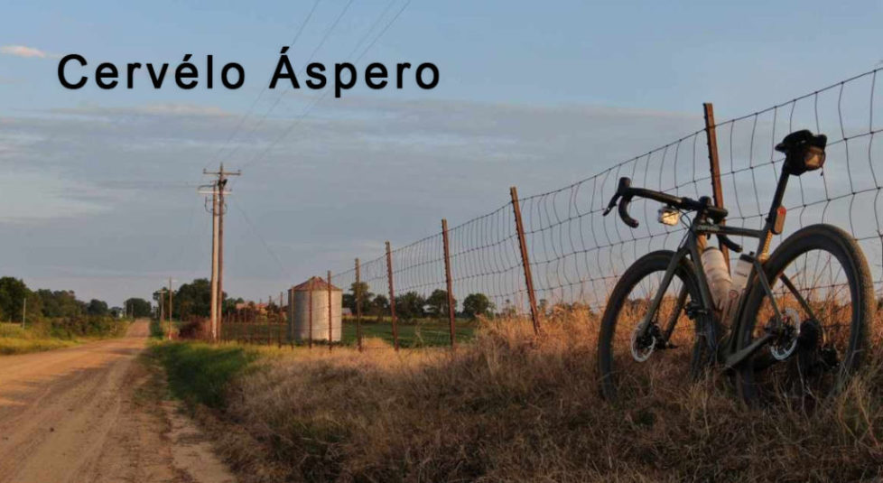 asp1140x624-Recovered